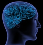 brain-wisdom-x-ray